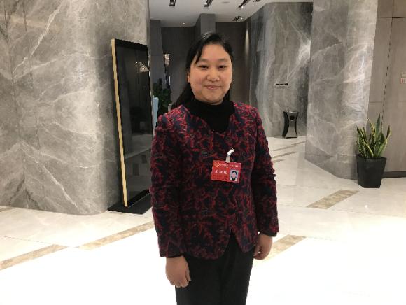 省人大代表、淮安市实验小学幼儿园院长倪春玲